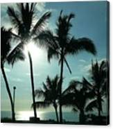 Palms In Silhouette Canvas Print