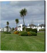 Palms Of Ireland Canvas Print
