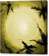 Palms Old Canvas Print