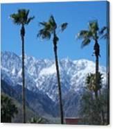 Palms With Snow Canvas Print