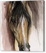 Palomino Arabian Horse Watercolor Portrait Canvas Print