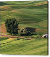 Palouse Farm 1 Canvas Print