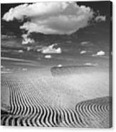 Palouse Field 2918 Canvas Print
