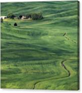 Palouse Green Fields Canvas Print