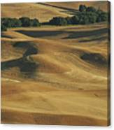 Palouse Patchwork By Jean Noren Canvas Print