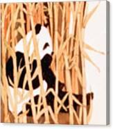 Panda In Bamboo Canvas Print