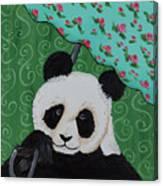 Panda In The Rain Canvas Print