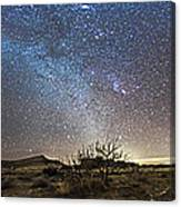Panorama Of Milky Way And Zodiacal Canvas Print