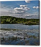 Panorama Of The Lake In Elkino Canvas Print