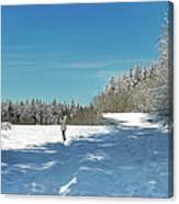 Panorama Of Winter Park Canvas Print