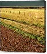 Panoramic Prairie Storm Canada At Sunset Canvas Print