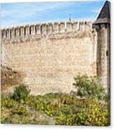 Medieval Ukrainian Fortress Canvas Print