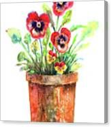 Pansies In A Clay Pot Canvas Print