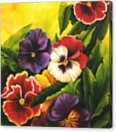 Pansies Or Vuela Mis Pensamientos Canvas Print
