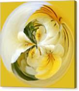 Pansy Ball Canvas Print