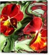 Pansy Hybrid Canvas Print