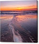 Panther Beach Canvas Print