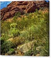 Papago Mountain Canvas Print
