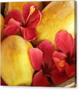 Papaya Fruit And Hibiscus Canvas Print