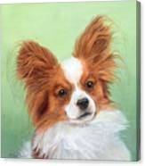 Papillion Canvas Print