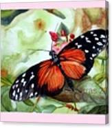Papillon I Canvas Print