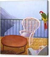 Pappagallo Canvas Print