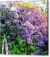 Paradise Hills Canvas Print