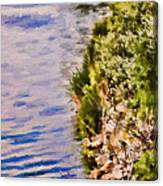 Paradise Lake Shore Canvas Print