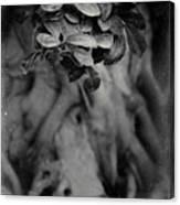 Parallel Botany #5175 Canvas Print