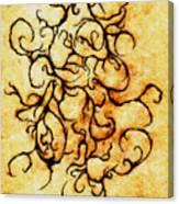 Parchment Canvas Print
