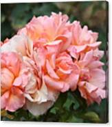 Paris Garden Roses Canvas Print