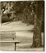 Park Bench In A Park Canvas Print