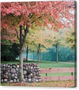 Park In Autumn/fall Colors Canvas Print