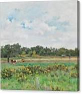 Park In Moulins In Tonnerais Canvas Print