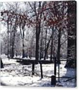 Park In The Snow Canvas Print