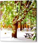 Park In Winter Canvas Print