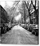 Park Slope Street Light Canvas Print