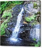 Parker Creek Falls Canvas Print