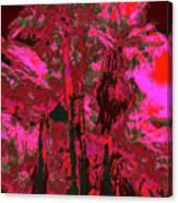 Parking Lot Palms 1 12 Canvas Print