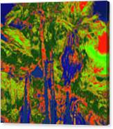 Parking Lot Palms 1 15 Canvas Print
