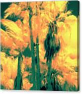 Parking Lot Palms 1 3 Canvas Print