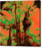Parking Lot Palms 1 6 Canvas Print