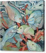 Parromania Canvas Print