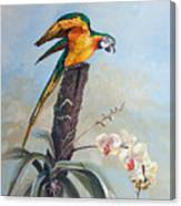 Parrot And Orchid Canvas Print