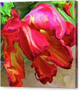 Parrot Tulip Canvas Print
