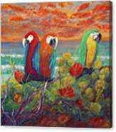 Parrots On Sunset Beach Canvas Print