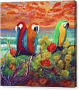 Parrots On The Beach Painterly Canvas Print