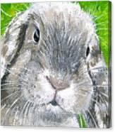 Parsnip Canvas Print
