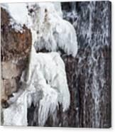 Partially Frozen Canvas Print