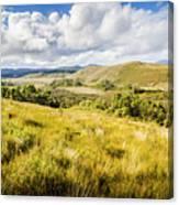 Parting Creek Regional Reserve Tasmania Canvas Print